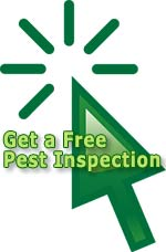 Get a free pest inspection!
